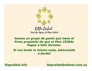 Presentacion RAP.pdf
