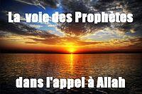 http://dc198.4shared.com/img/320098613/e376cd7f/la_voie_des_prophtes.png?rnd=0.7305236969932181&sizeM=7