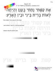 copywork parshas noach.pdf