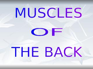 MUSCLES_OF_THE_BACK-MD.ppt