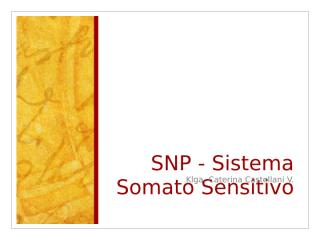 13. SNP - Sist. Somatosensitivo.ppt