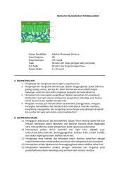 LK 4.2 RPP  SOLIKIN.docx