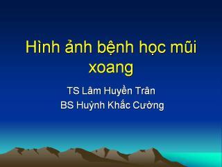 HINH ANH BENH LY MUI XOANG.pdf