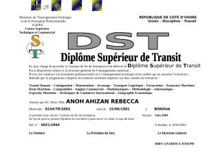 DST_AHIZAN.doc